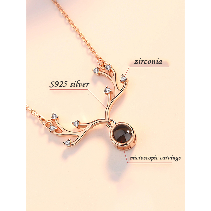 170096139293 - Personalized Antler Projection Necklace & 100 Languages Photo