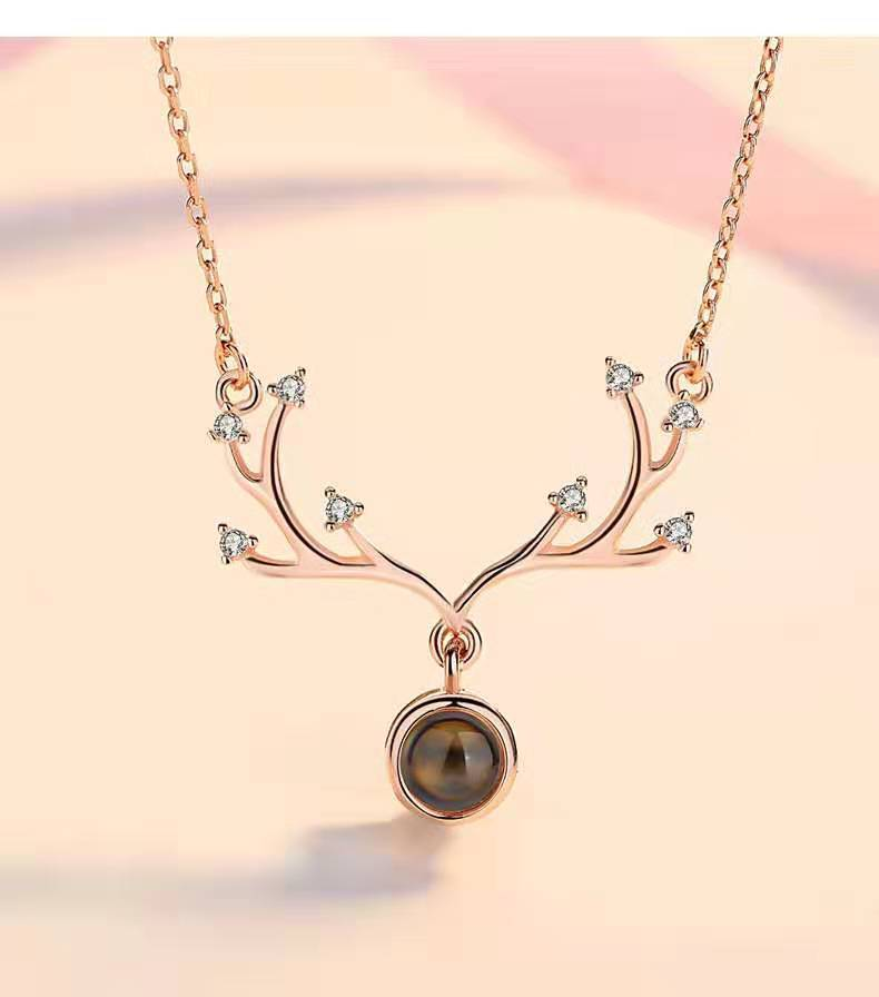 541468040385 - Personalized Antler Projection Necklace & 100 Languages Photo