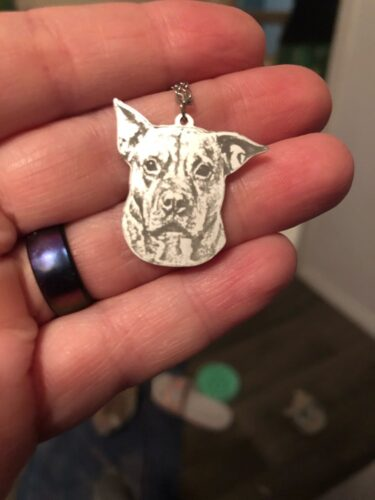 925 Sterling Silver Pets Photo Engraved Necklace Cute Cat/Dog Engraved Necklace photo review