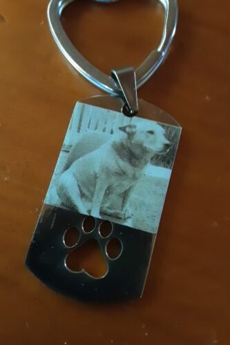Personalized Photo Keychain With Pet Tags photo review